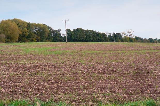 Wolston Fields before image